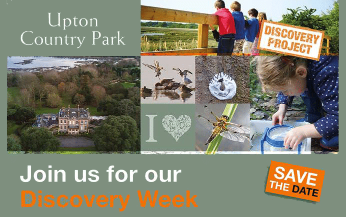 Join Us for our Discovery Week