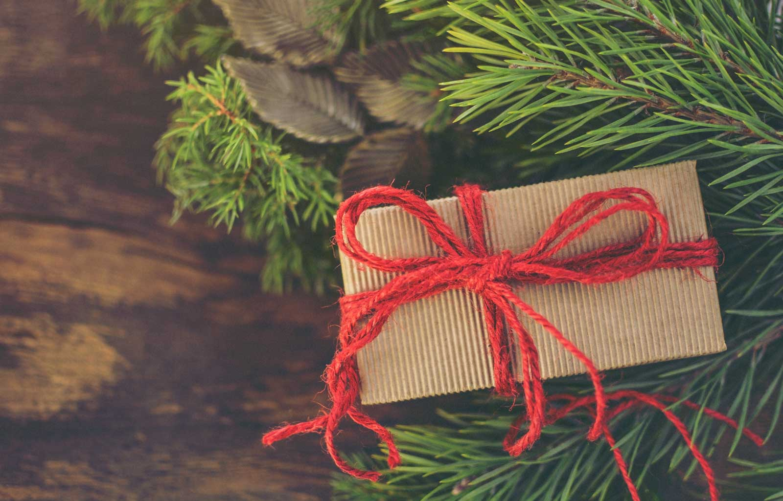 Christmas Gift ideas that help support the Country Park