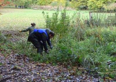 Practical Conservation Volunteers clearing vegetation