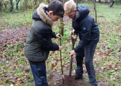 Lytchett Minster Explorer Scouts planting in the orchard