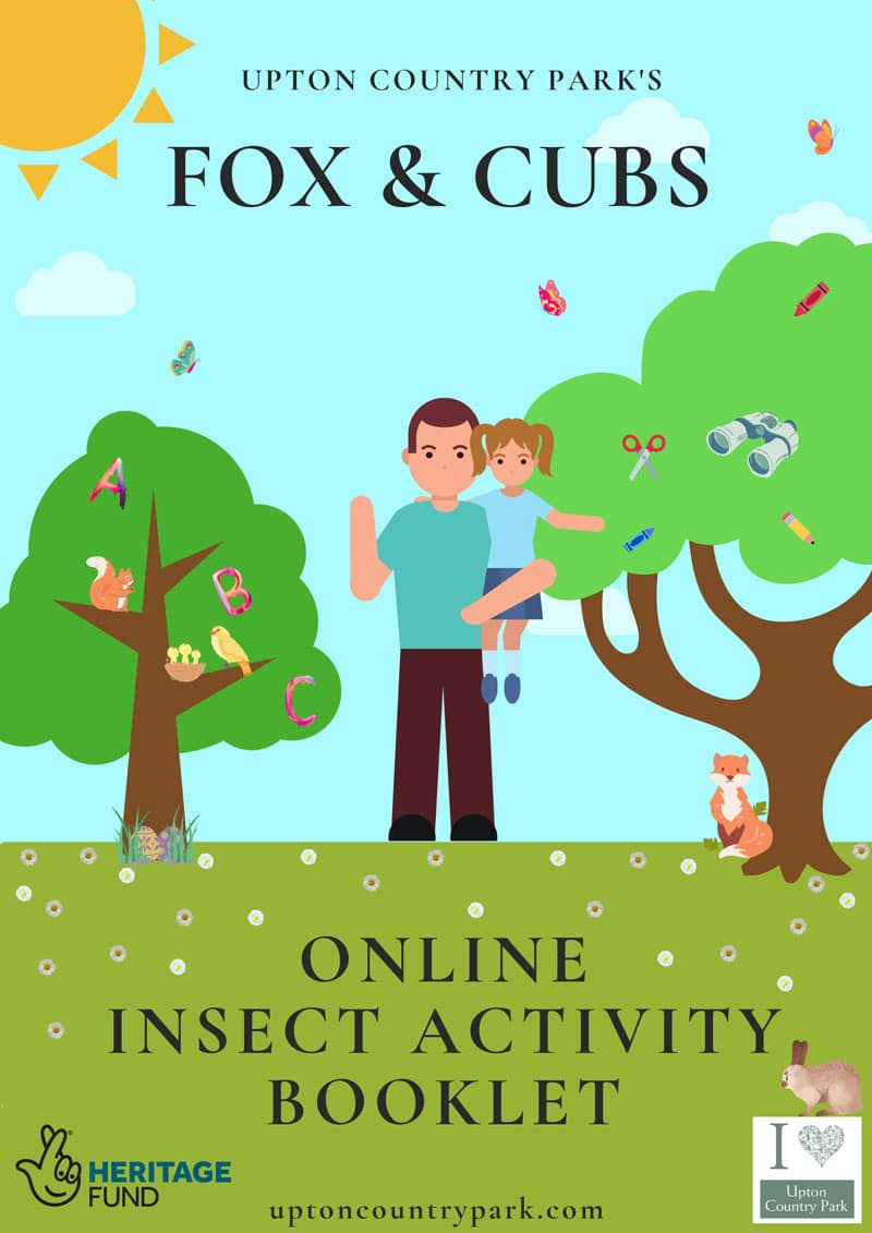 March Fox & Cubs Online Activity Booklet