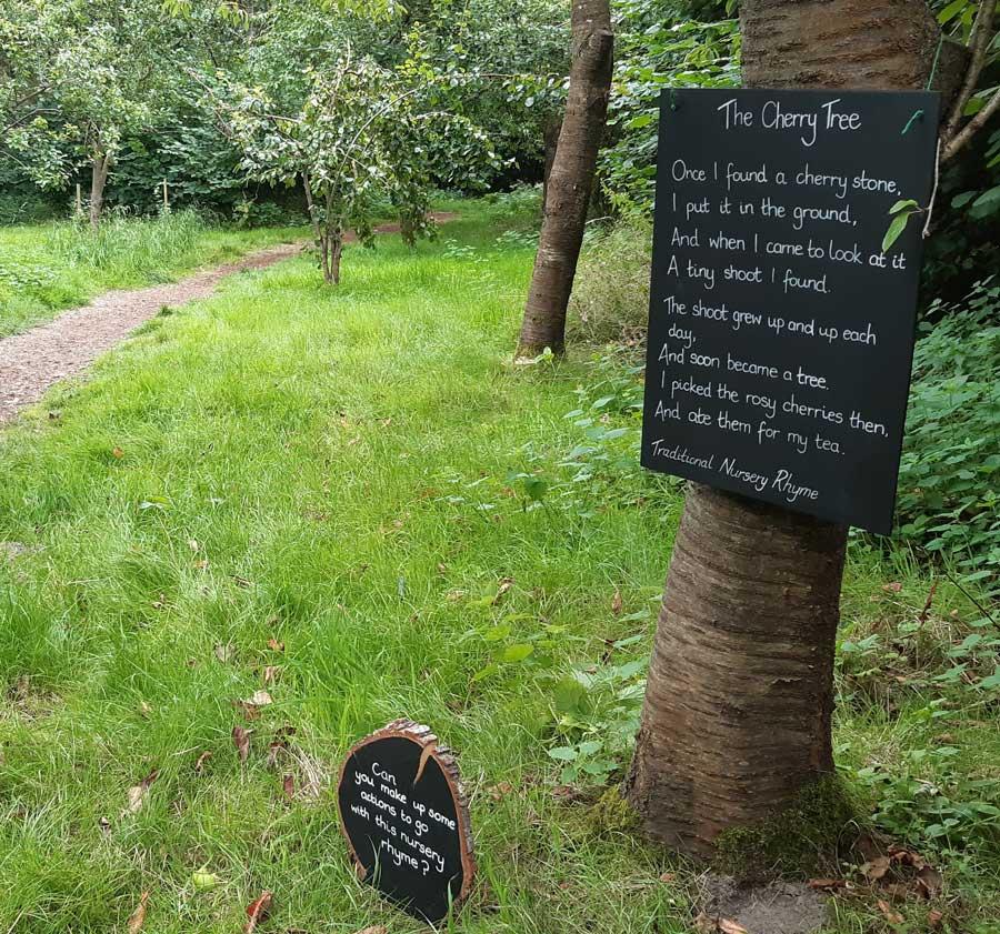 The Poetree Trail, Shoreline woods